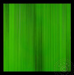 SENSE_fine_art_Kalloch_Green_24x24in_