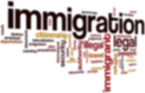 Immigration Law Practice