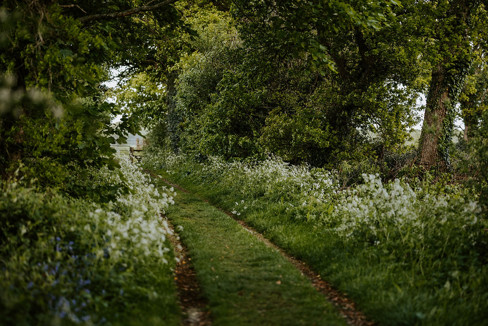 A wooded farm track