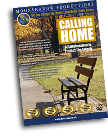 Calling Home: Collaboration to Protect the Elderly