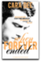 batch_WFE-cover-ebook.png