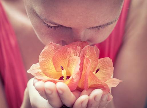 Importancia del Sentido del Olfato
