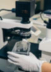 Foto micro experimento.jpg
