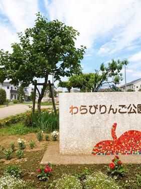【蕨】わらびりんご公園