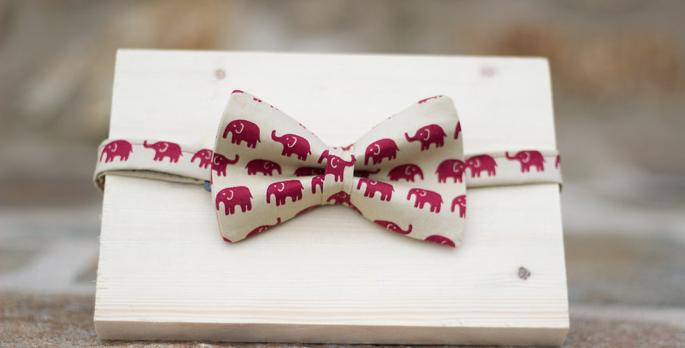 Pajarita Elefantes