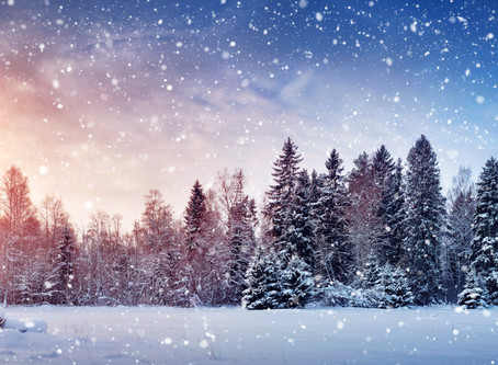 Weathering  the Winter With Chinese Medicine