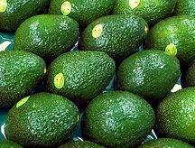 Lava Valley Avocados