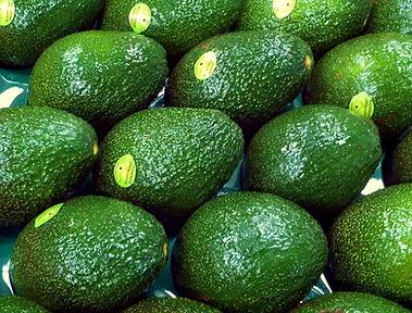 Lava Valley Avocados