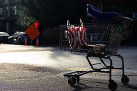 wesley-mc-lachlan-shopping trolley.jpg