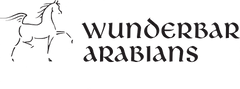 Wunderbar Logo-1 2 Black.png