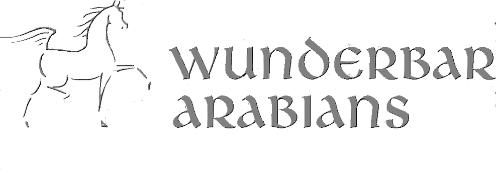 embossed logo.png