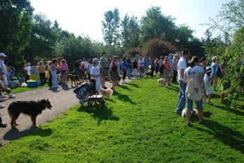 picture of a pet event