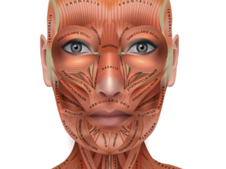Microcurrent: It's All About the Facial Muscles!