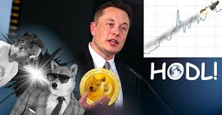 Elon Musk Gives Dogecoin Whales An Ultimatum- You're Either For or Against it- Full Support Coming!