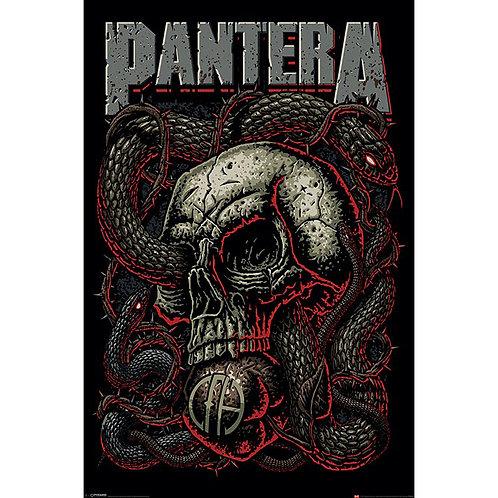 Pantera - Snake Eye (poster)