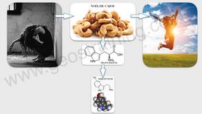 Un puissant antidépresseur naturel : la noix de cajou