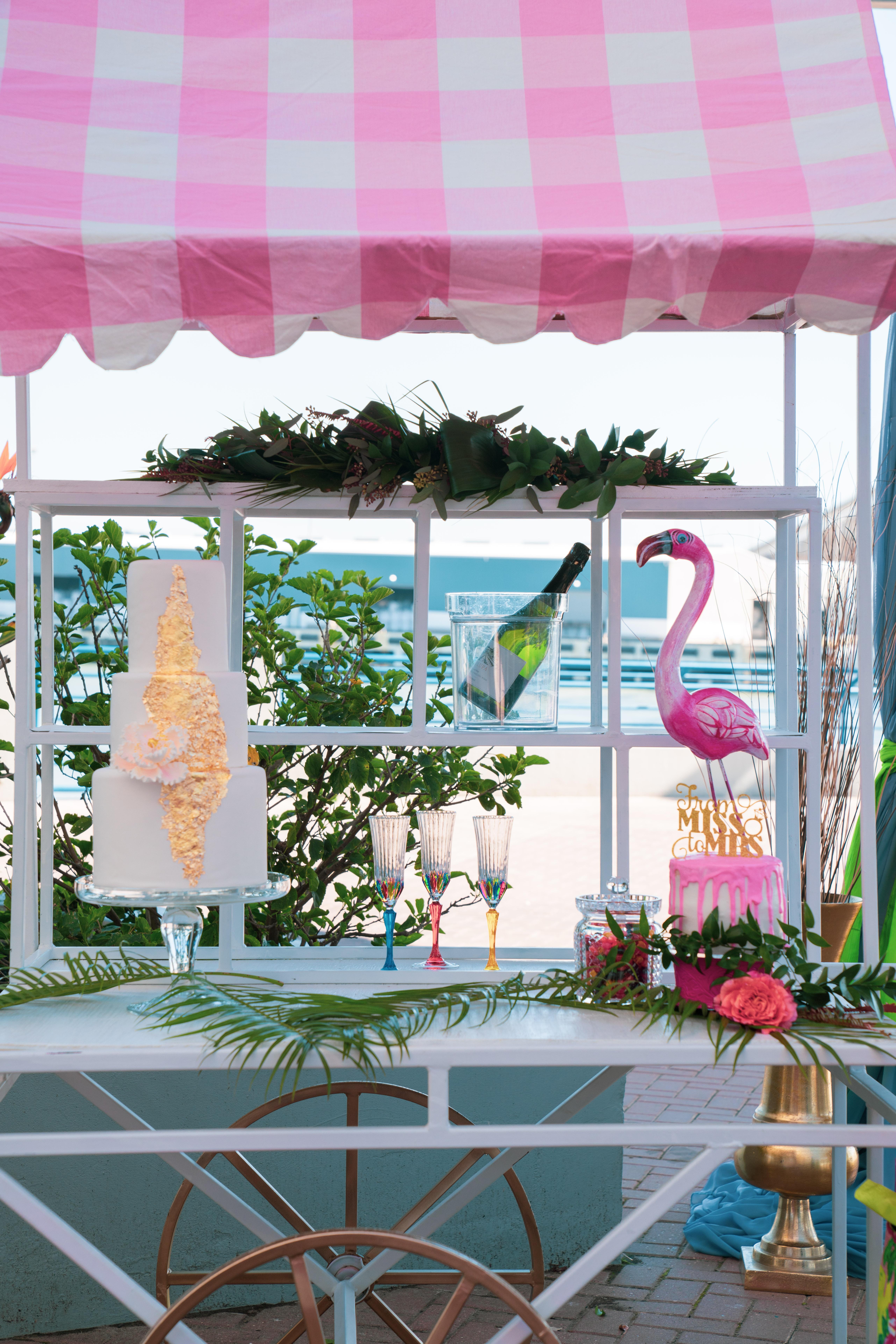 Bridal Shower Photo Shoot