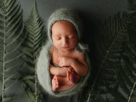 Sesja noworodkowa Leona