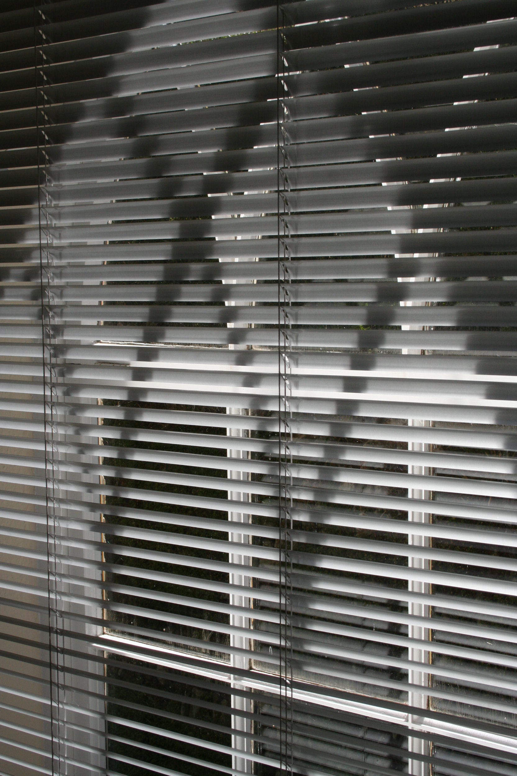 Blinds black and white 2