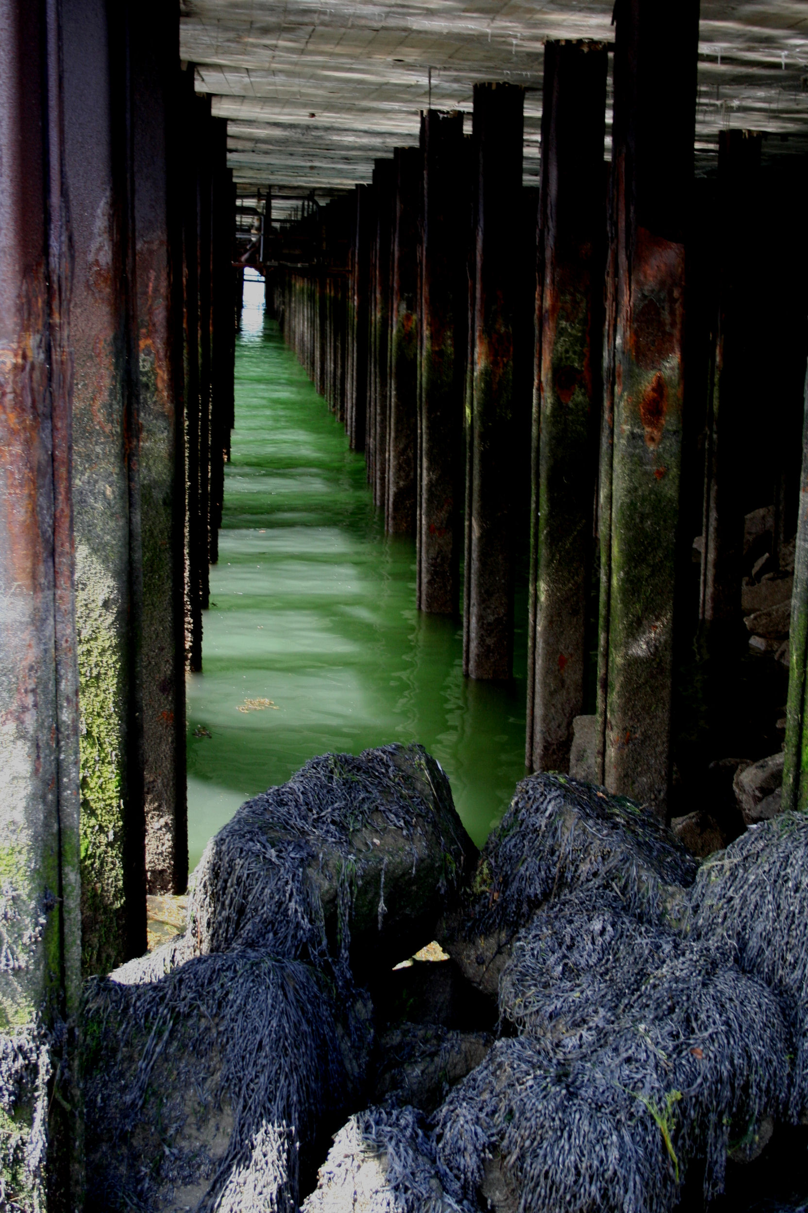 Sea pillars