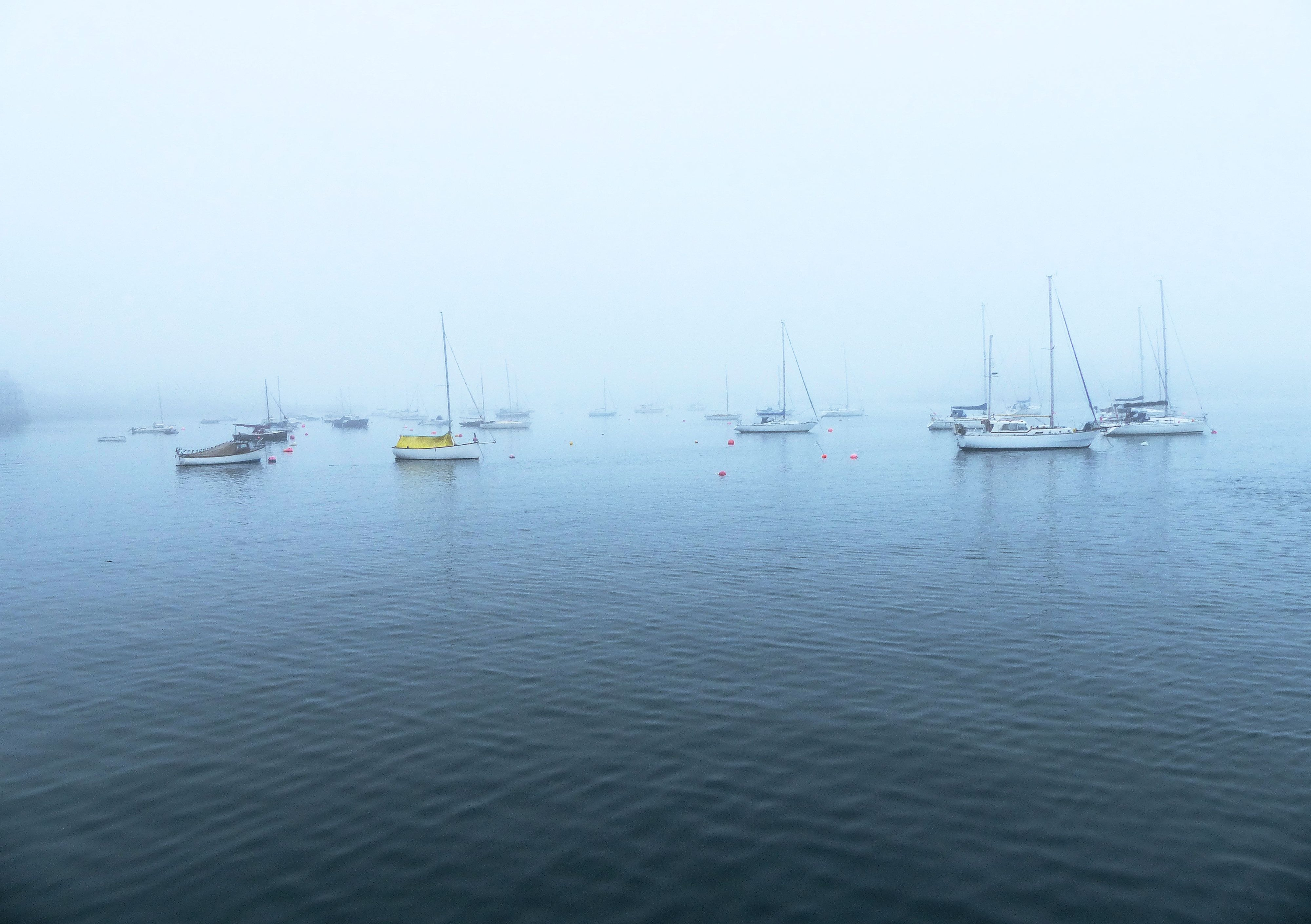 Mist boats