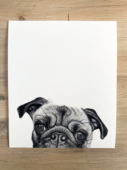 "10x12"" Fine Art Giclee Print of a Pug"