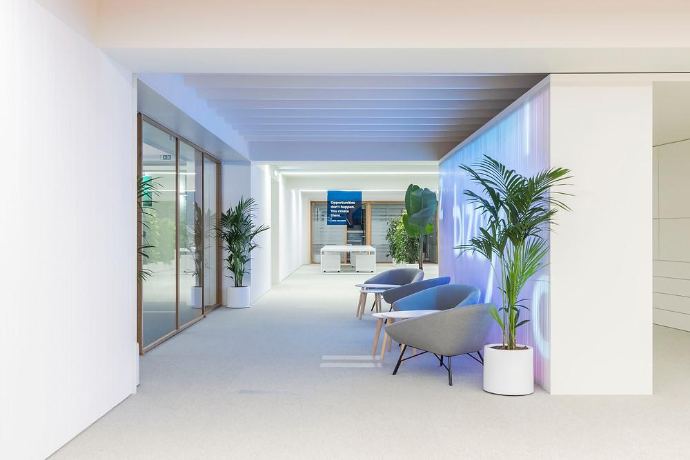 Iluminaçao Tromilux nos escritórios da Bizay em Lisboa projeto da Paralelo Zero arquitetura linhas continuas em led corredor