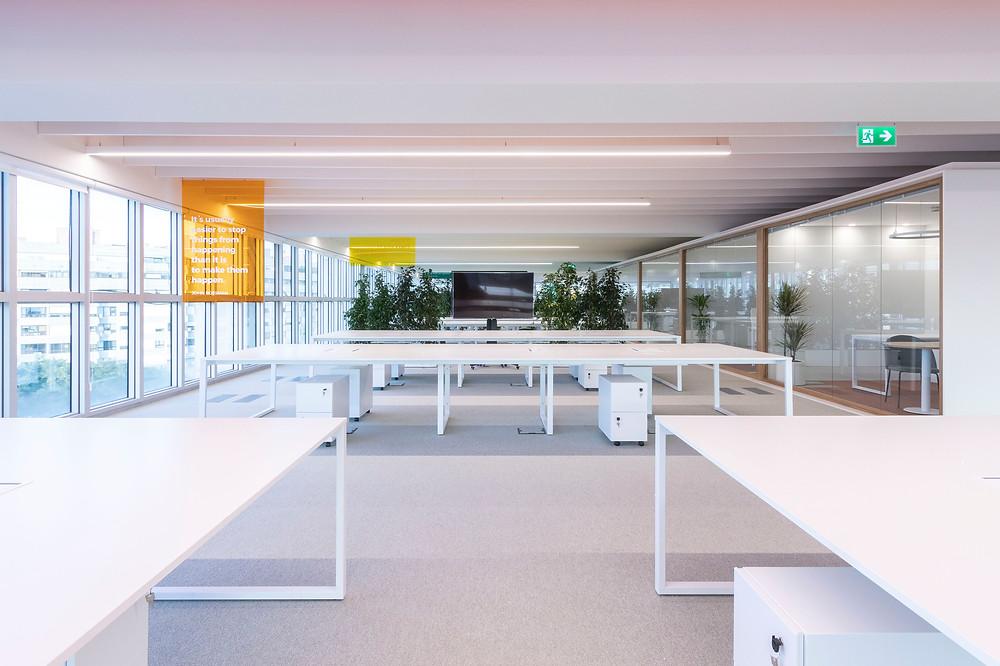 Iluminaçao Tromilux nos escritórios open space da Bizay em Lisboa projeto da Paralelo Zero arquitetura linhas continuas em led