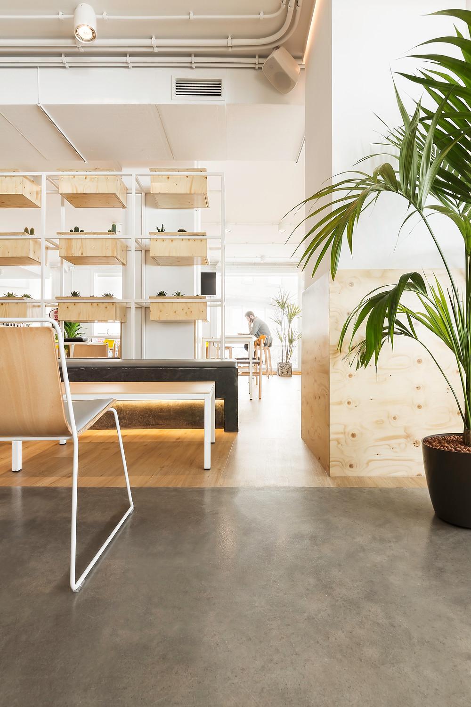 espaço aberto restaurante café iluminação Tromilux projetor saliente branco marca nacional planta verde prateleiras madeira