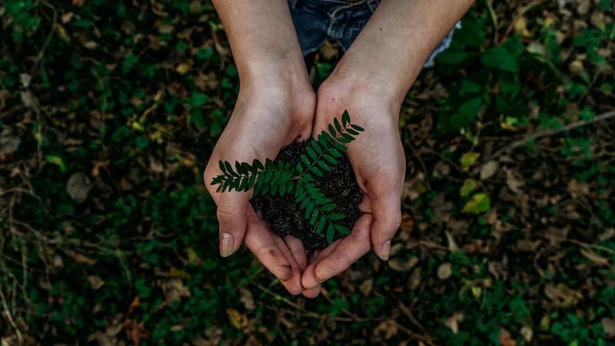 5 dicas para tornar a sua Iluminação mais Sustentável