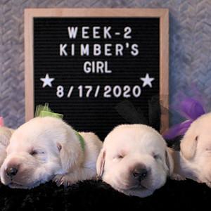 Puppies: W2