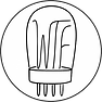cropped-wtf-logo-400x400-circle.png