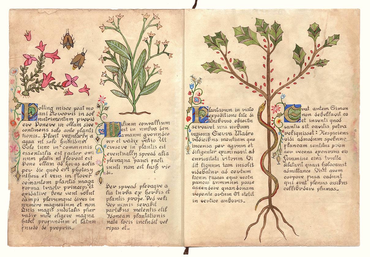 pg3-4.jpg