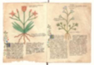 pg1-2.jpg