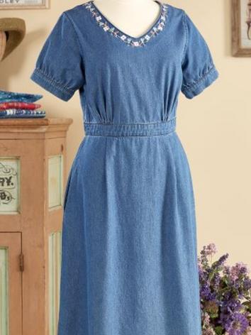 Ella Simone Embroidered Denim Dress