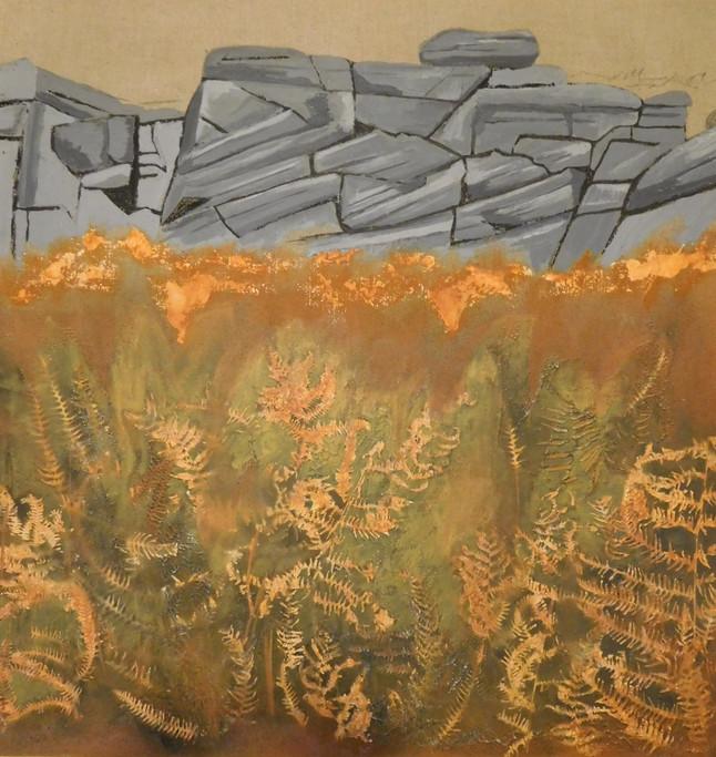 Autumn Ferns at Burbage Rocks