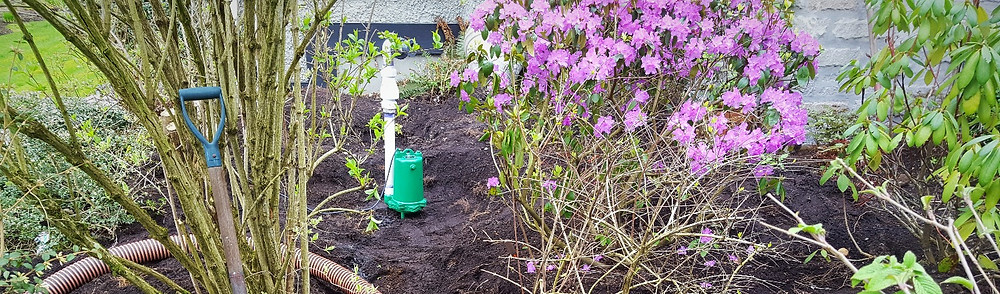 Myers septic field pump replacement