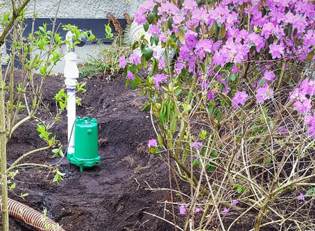Spring forward with sump pump service done by trusted professionals!
