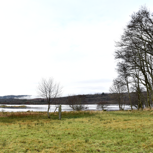 Grounds and West Loch Fyne