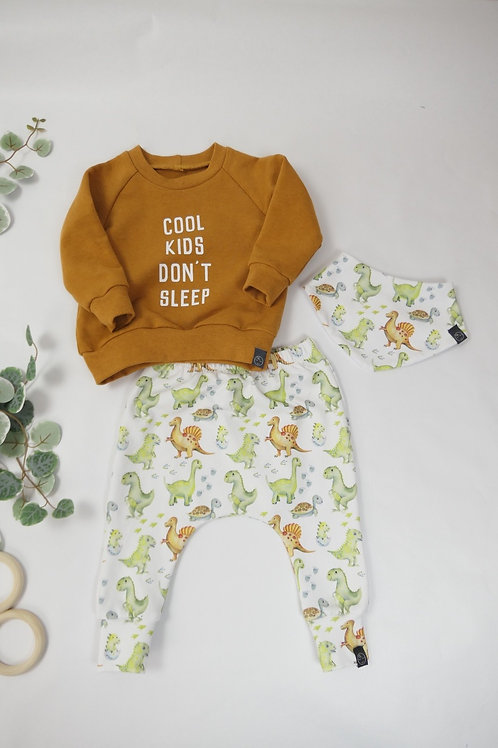 Set Sweater, Halstuch + Slim Harenpants Gr. 68 3-6M
