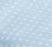 Punkte hellblau.PNG