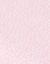 Rosa streumotib.PNG