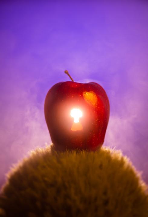 Berkowitz Photography_Apple Web.jpg