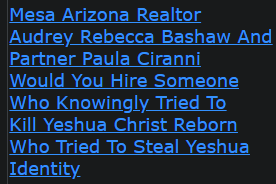 Mesa Arizona Realtor Audrey Rebecca Bashaw And Partner Paula Ciranni Would You Hire Someone Who Knowingly Tried To Kill Yeshua Christ Reborn Who Tried To Steal Yeshua Identity