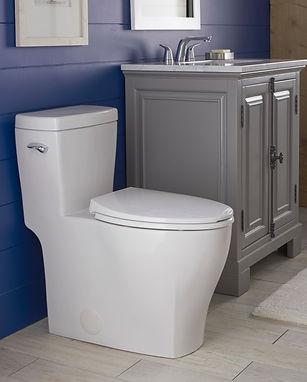 Lemora Toilet and Faucet.jpg