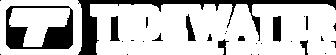 TES logo White.png