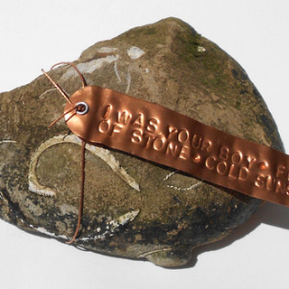 Boy Rock: Oregon coast fossil + poem