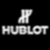 HUblot.png