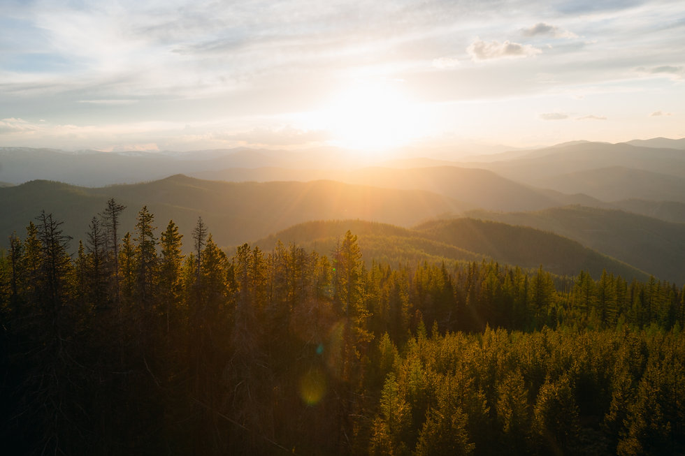 pintler wilderness montana mountains