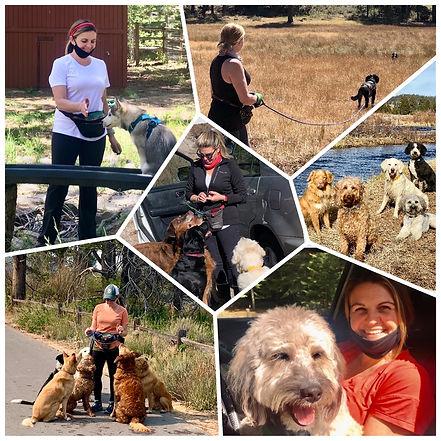 Buddy Dog Training & Care, Puppy Classes, Jen Ruiz Kohn